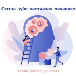 #47. Сэтгэл зүйн хамгаалах механизм